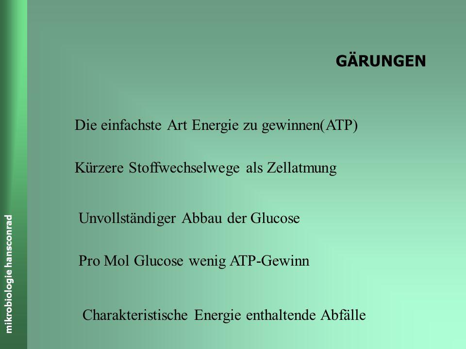 mikrobiologie hansconrad GÄRUNGEN Die einfachste Art Energie zu gewinnen(ATP) Kürzere Stoffwechselwege als Zellatmung Unvollständiger Abbau der Glucose Pro Mol Glucose wenig ATP-Gewinn Charakteristische Energie enthaltende Abfälle