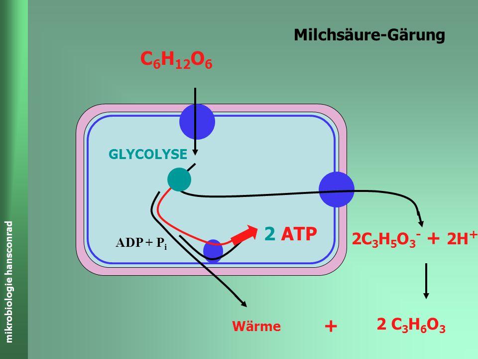 mikrobiologie hansconrad Milchsäure-Gärung C 6 H 12 O 6 2 C 3 H 6 O 3 2C 3 H 5 O 3 - + 2H + ADP + P i 2 ATP Wärme + GLYCOLYSE