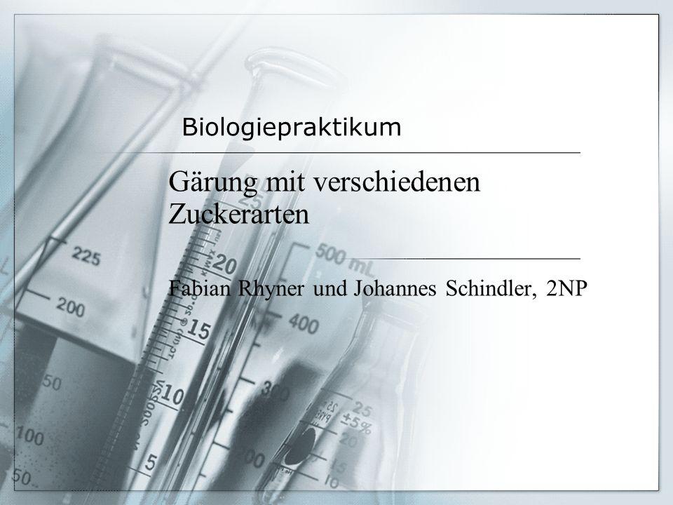 Biologiepraktikum Gärung mit verschiedenen Zuckerarten Fabian Rhyner und Johannes Schindler, 2NP