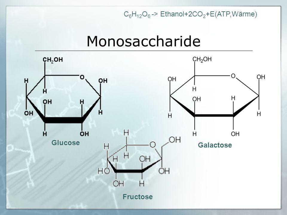 C 6 H 12 O 6 -> Ethanol+2CO 2 +E(ATP,Wärme) Dissaccharide Saccharose Lactose Maltose Fructose Glucose Galactose