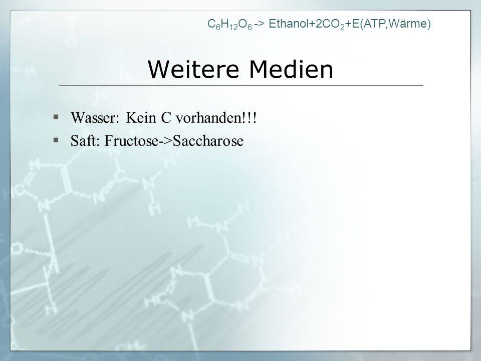 C 6 H 12 O 6 -> Ethanol+2CO 2 +E(ATP,Wärme) Weitere Medien Wasser: Kein C vorhanden!!! Saft: Fructose->Saccharose