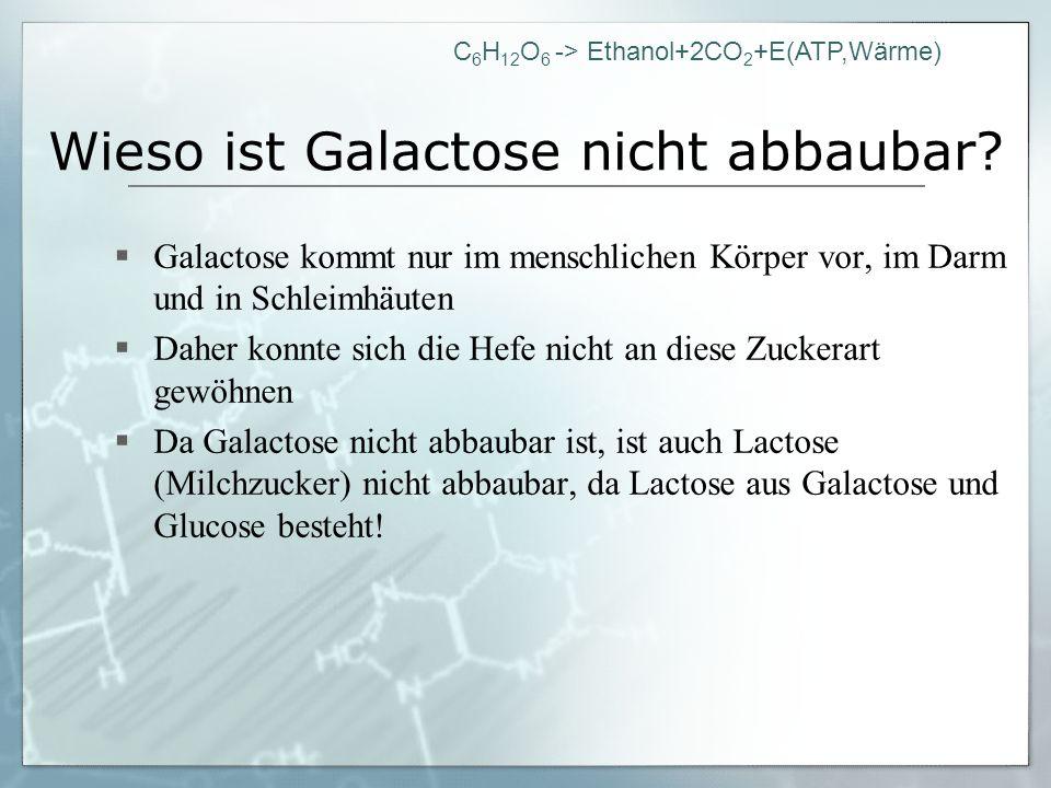 C 6 H 12 O 6 -> Ethanol+2CO 2 +E(ATP,Wärme) Wieso ist Galactose nicht abbaubar? Galactose kommt nur im menschlichen Körper vor, im Darm und in Schleim