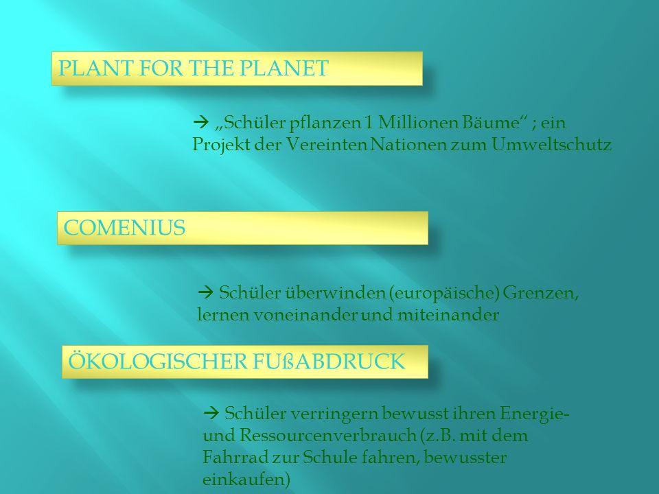 PLANT FOR THE PLANET Schüler pflanzen 1 Millionen Bäume ; ein Projekt der Vereinten Nationen zum Umweltschutz COMENIUS Schüler überwinden (europäische) Grenzen, lernen voneinander und miteinander ÖKOLOGISCHER FUßABDRUCK Schüler verringern bewusst ihren Energie- und Ressourcenverbrauch (z.B.