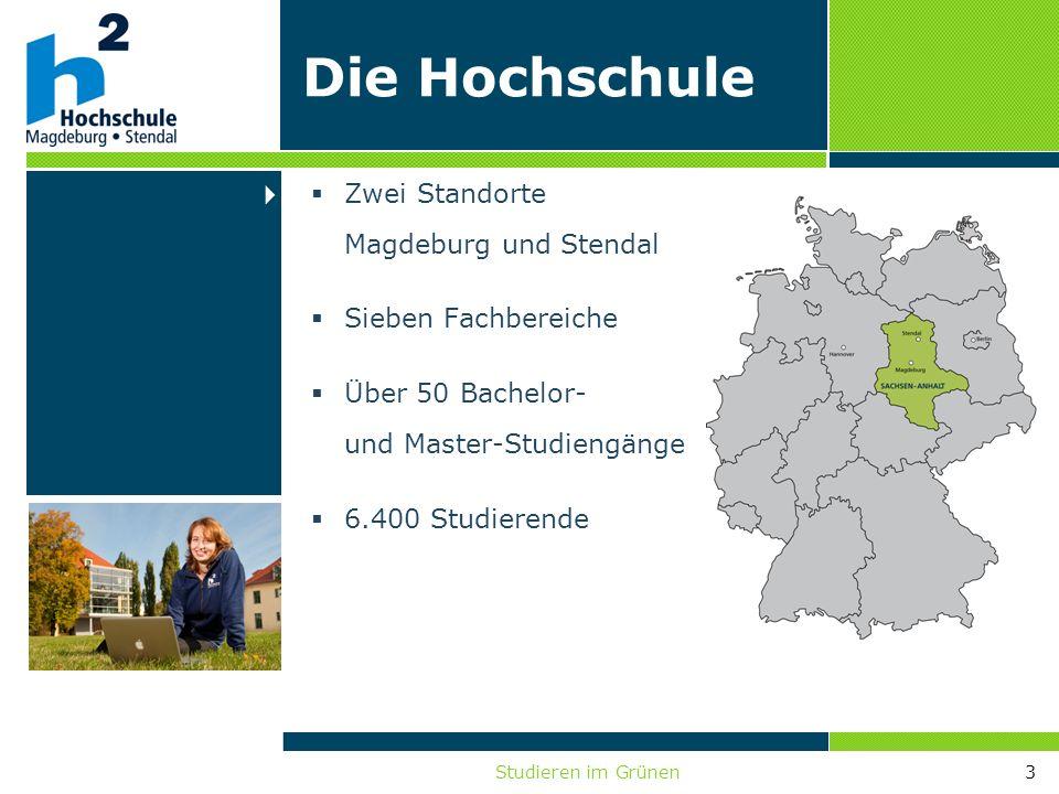 Studieren im Grünen3 Die Hochschule Zwei Standorte Magdeburg und Stendal Sieben Fachbereiche Über 50 Bachelor- und Master-Studiengänge 6.400 Studieren