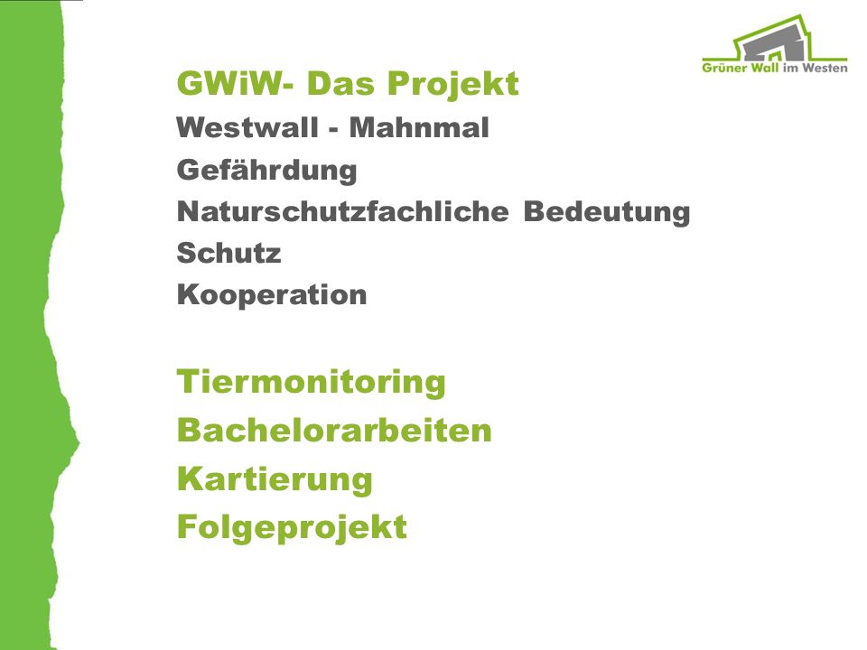 GWiW- Das Projekt Westwall - Mahnmal Gefährdung Naturschutzfachliche Bedeutung Schutz Kooperation Tiermonitoring Bachelorarbeiten Kartierung Folgeproj