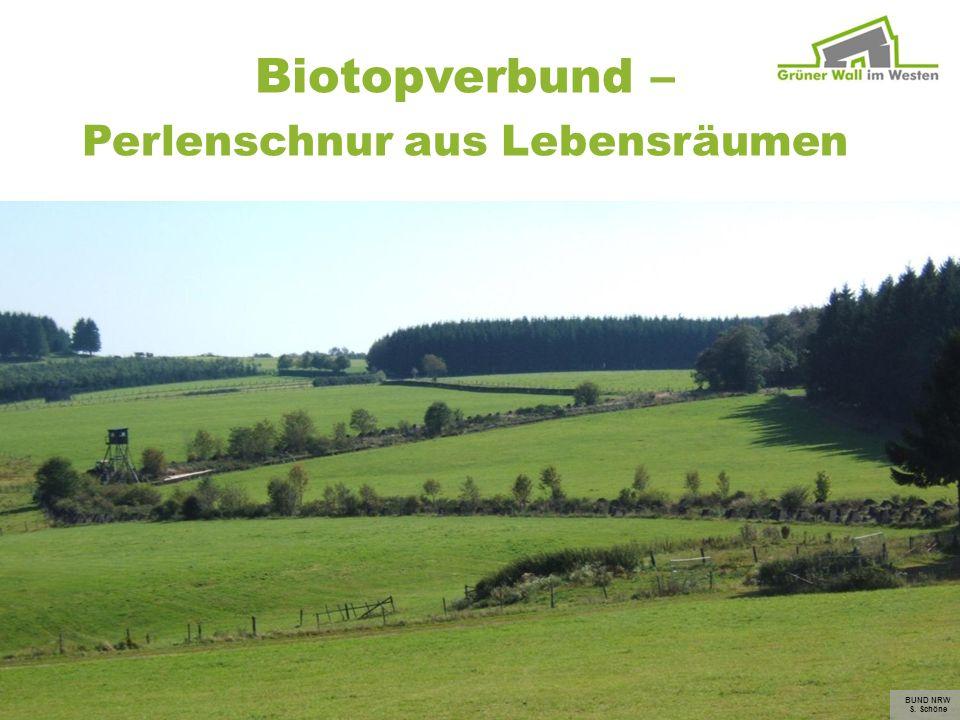 Biotopverbund – Perlenschnur aus Lebensräumen BUND NRW S. Schöne