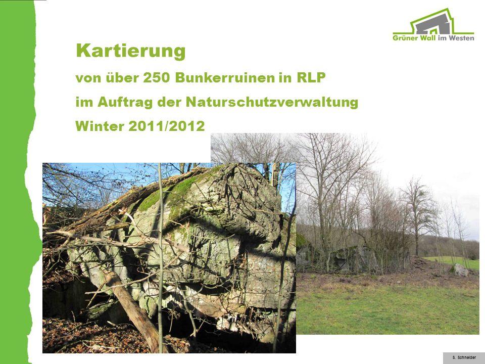 Kartierung von über 250 Bunkerruinen in RLP im Auftrag der Naturschutzverwaltung Winter 2011/2012 S. Schneider