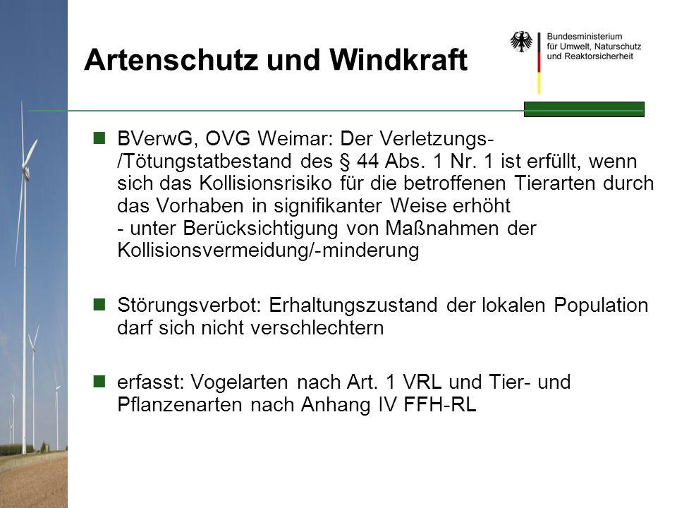 Artenschutz und Windkraft BVerwG, OVG Weimar: Der Verletzungs- /Tötungstatbestand des § 44 Abs. 1 Nr. 1 ist erfüllt, wenn sich das Kollisionsrisiko fü