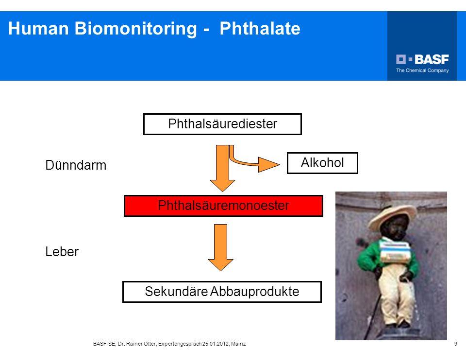 BASF SE, Dr. Rainer Otter, Expertengespräch 25.01.2012, Mainz 9 Human Biomonitoring - Phthalate Phthalsäurediester Phthalsäuremonoester Alkohol Sekund