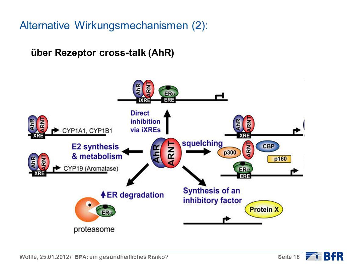 Wölfle, 25.01.2012 / BPA: ein gesundheitliches Risiko?Seite 16 Alternative Wirkungsmechanismen (2): über Rezeptor cross-talk (AhR)