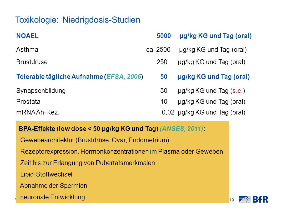 Wölfle, 25.01.2012 / BPA: ein gesundheitliches Risiko?Seite 19 Toxikologie: Niedrigdosis-Studien NOAEL 5000 µg/kg KG und Tag (oral) Asthma ca. 2500 µg