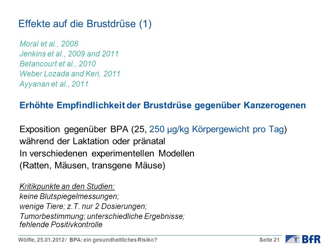 Wölfle, 25.01.2012 / BPA: ein gesundheitliches Risiko?Seite 21 Effekte auf die Brustdrüse (1) Moral et al., 2008 Jenkins et al., 2009 and 2011 Betancourt et al., 2010 Weber Lozada and Keri, 2011 Ayyanan et al., 2011 Erhöhte Empfindlichkeit der Brustdrüse gegenüber Kanzerogenen Exposition gegenüber BPA (25, 250 µg/kg Körpergewicht pro Tag) während der Laktation oder pränatal In verschiedenen experimentellen Modellen (Ratten, Mäusen, transgene Mäuse) Kritikpunkte an den Studien: keine Blutspiegelmessungen; wenige Tiere; z.T.