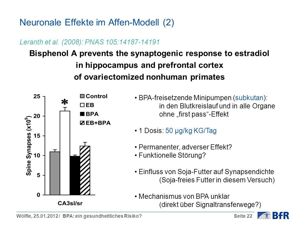 Wölfle, 25.01.2012 / BPA: ein gesundheitliches Risiko?Seite 22 Neuronale Effekte im Affen-Modell (2) Leranth et al. (2008): PNAS 105:14187-14191 Bisph