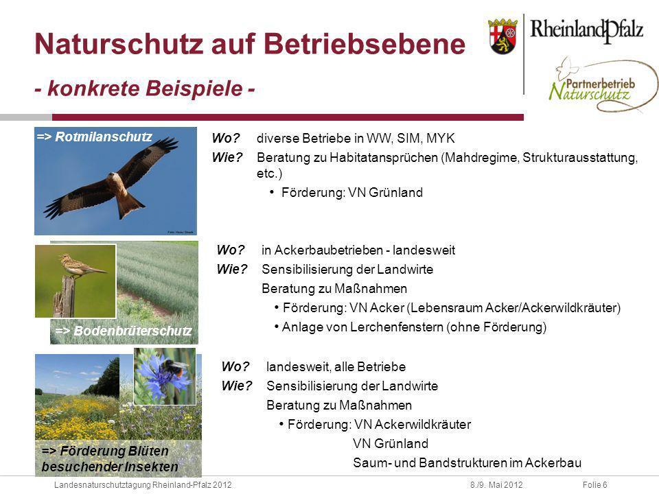 Folie 6Landesnaturschutztagung Rheinland-Pfalz 20128./9. Mai 2012 Naturschutz auf Betriebsebene - konkrete Beispiele - Wo? diverse Betriebe in WW, SIM