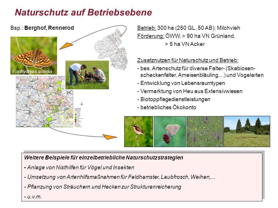 Euphydryas aurinia Naturschutz auf Betriebsebene Weitere Beispiele für einzelbetriebliche Naturschutzstrategien - Anlage von Nisthilfen für Vögel und