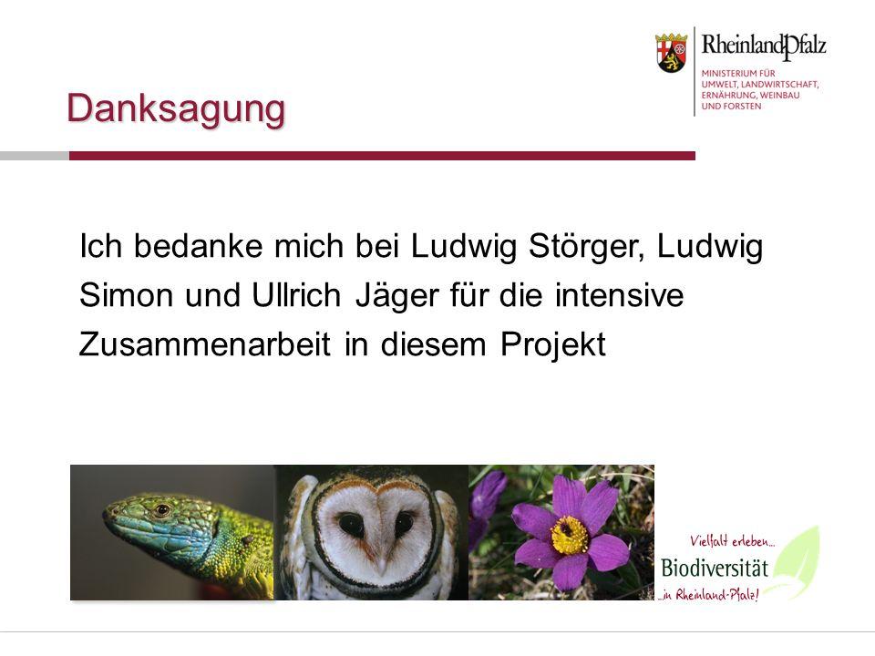 Danksagung Ich bedanke mich bei Ludwig Störger, Ludwig Simon und Ullrich Jäger für die intensive Zusammenarbeit in diesem Projekt