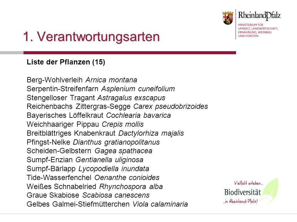1. Verantwortungsarten Liste der Pflanzen (15) Berg-Wohlverleih Arnica montana Serpentin-Streifenfarn Asplenium cuneifolium Stengelloser Tragant Astra