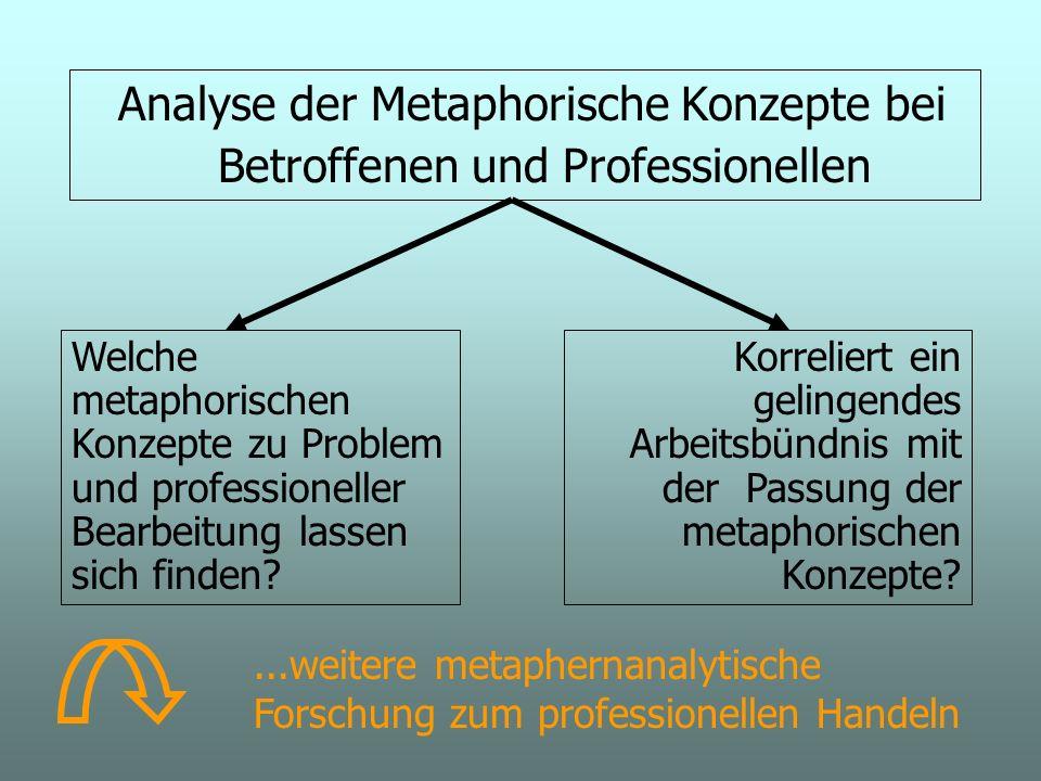 Analyse der Metaphorische Konzepte bei Betroffenen und Professionellen Welche metaphorischen Konzepte zu Problem und professioneller Bearbeitung lassen sich finden.