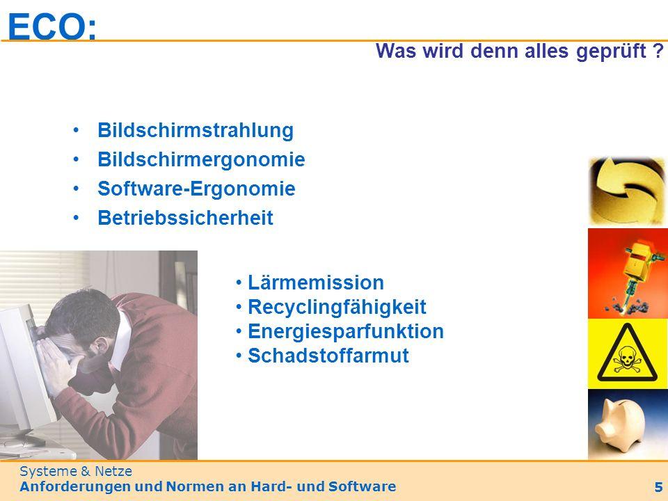 Bildschirmstrahlung Bildschirmergonomie Software-Ergonomie Betriebssicherheit ECO: Was wird denn alles geprüft .