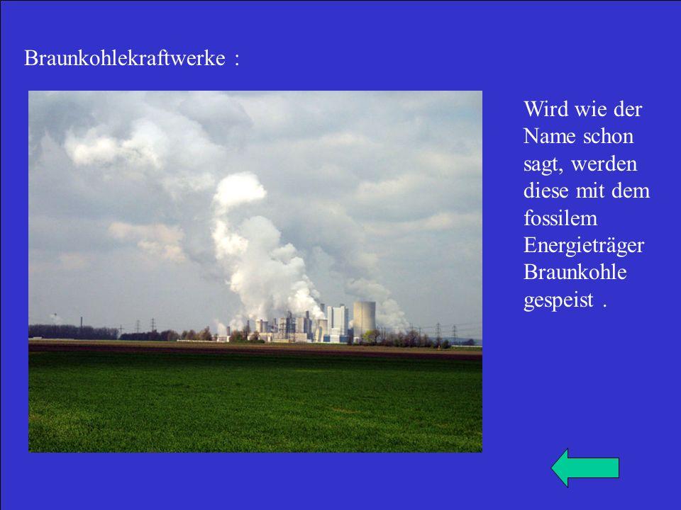 Braunkohlekraftwerke : Wird wie der Name schon sagt, werden diese mit dem fossilem Energieträger Braunkohle gespeist.