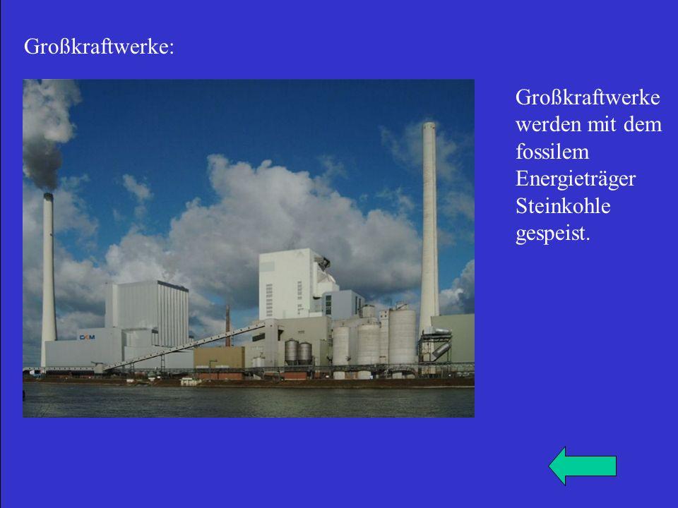 Großkraftwerke: Großkraftwerke werden mit dem fossilem Energieträger Steinkohle gespeist.