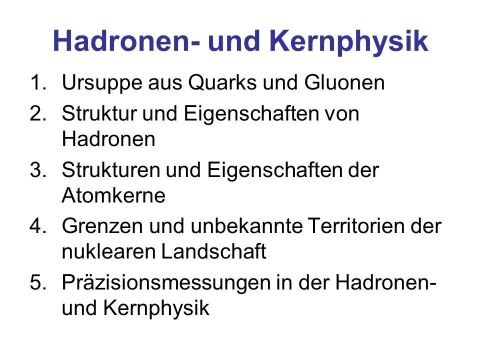 1.Ursuppe aus Quarks und Gluonen 2.Struktur und Eigenschaften von Hadronen 3.Strukturen und Eigenschaften der Atomkerne 4.Grenzen und unbekannte Territorien der nuklearen Landschaft 5.Präzisionsmessungen in der Hadronen- und Kernphysik Hadronen- und Kernphysik