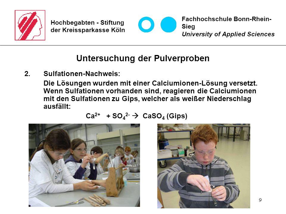 9 Hochbegabten - Stiftung der Kreissparkasse Köln Untersuchung der Pulverproben 2.Sulfationen-Nachweis: Die Lösungen wurden mit einer Calciumionen-Lös