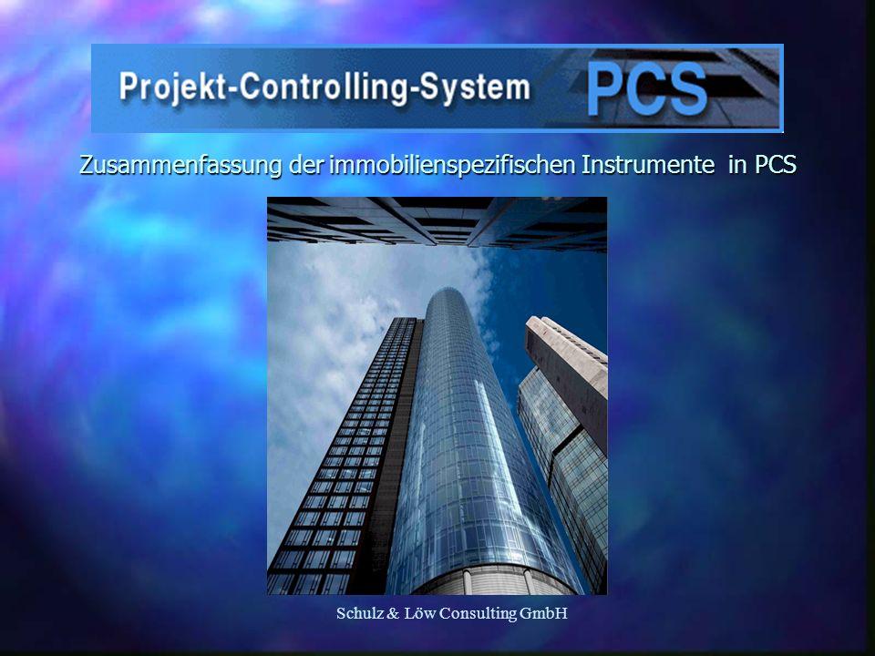Schulz & Löw Consulting GmbH Zusammenfassung der immobilienspezifischen Instrumente in PCS