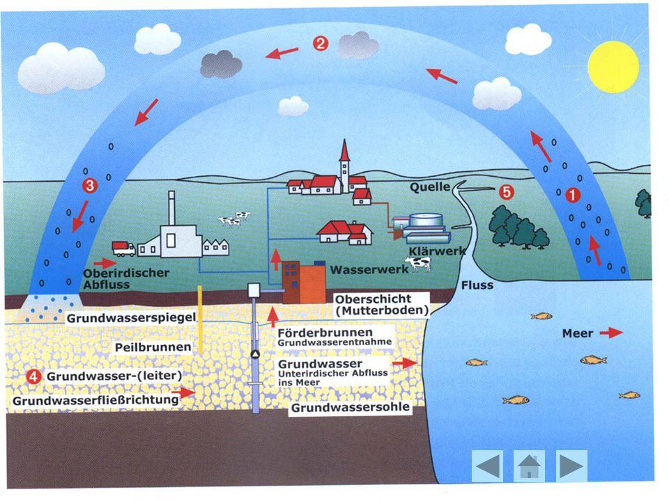 Der Wasserkreislauf: