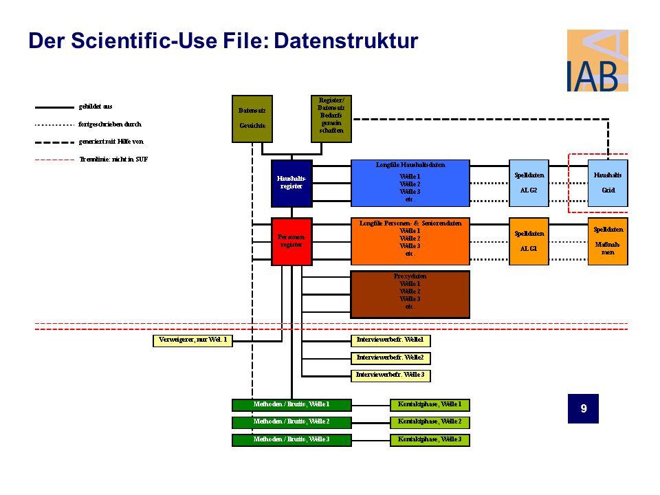 9 Der Scientific-Use File: Datenstruktur