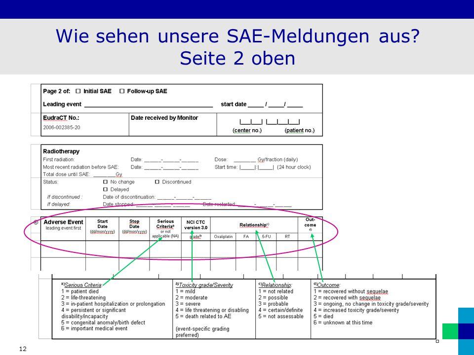 12 Wie sehen unsere SAE-Meldungen aus? Seite 2 oben