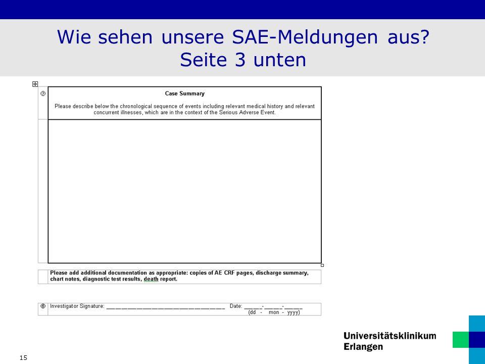 15 Wie sehen unsere SAE-Meldungen aus? Seite 3 unten