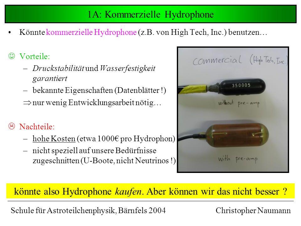Vergleich der Signale Christopher Naumann …Bisher keines deutlich überlegen… LowTech ® ANTARES-Kugel HighTech nun noch nötig: Versuche, auf diese Signalformen zu triggern… Schule für Astroteilchenphysik, Bärnfels 2004