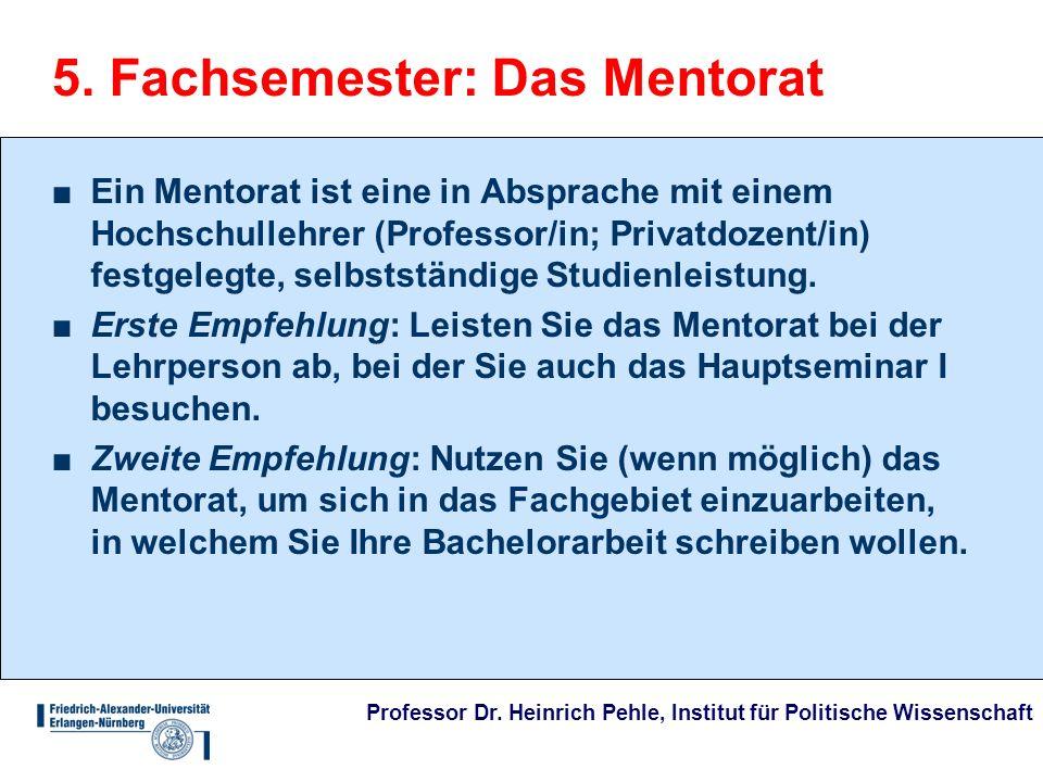 Professor Dr. Heinrich Pehle, Institut für Politische Wissenschaft 5. Fachsemester: Das Mentorat Ein Mentorat ist eine in Absprache mit einem Hochschu
