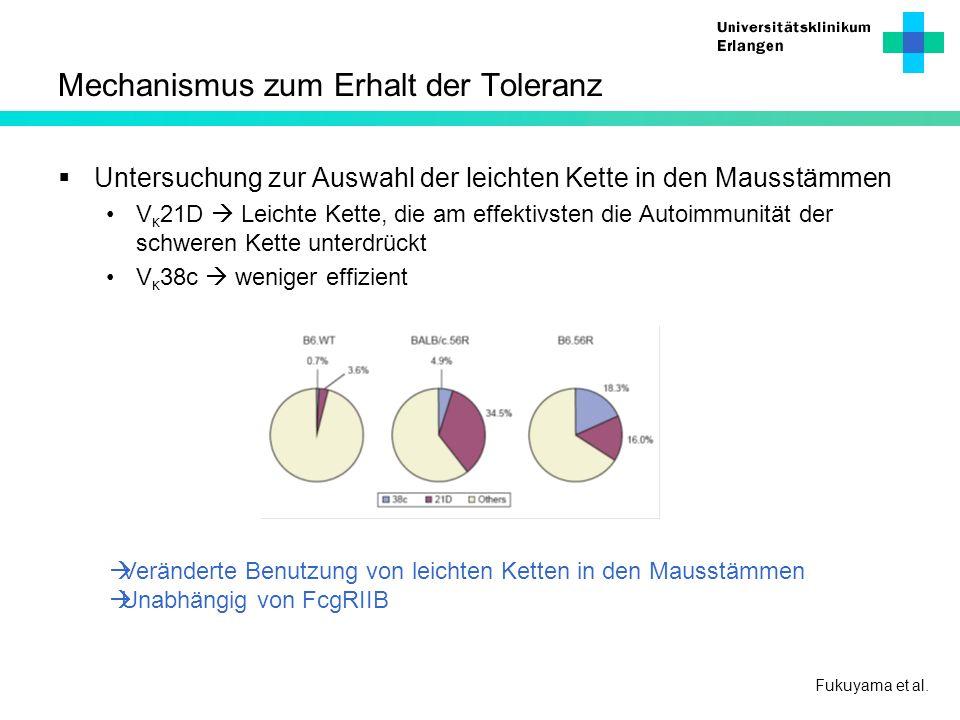 Mechanismus zum Erhalt der Toleranz Fukuyama et al. Untersuchung zur Auswahl der leichten Kette in den Mausstämmen V κ 21D Leichte Kette, die am effek