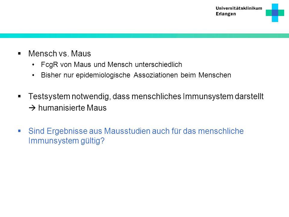 Mensch vs. Maus FcgR von Maus und Mensch unterschiedlich Bisher nur epidemiologische Assoziationen beim Menschen Testsystem notwendig, dass menschlich