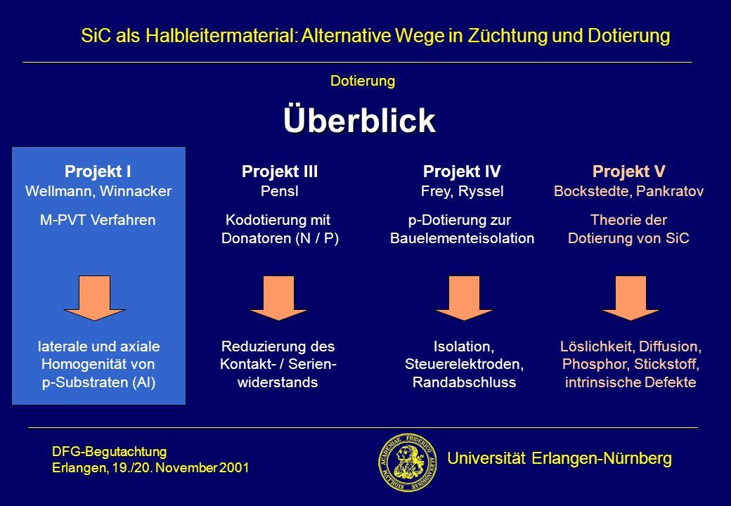 Universität Erlangen-Nürnberg DFG-Begutachtung Erlangen, 19./20.