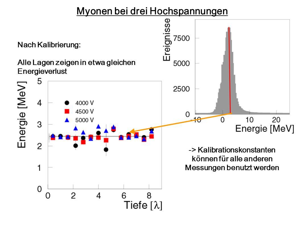 Myonen bei drei Hochspannungen Nach Kalibrierung: Alle Lagen zeigen in etwa gleichen Energieverlust -> Kalibrationskonstanten können für alle anderen