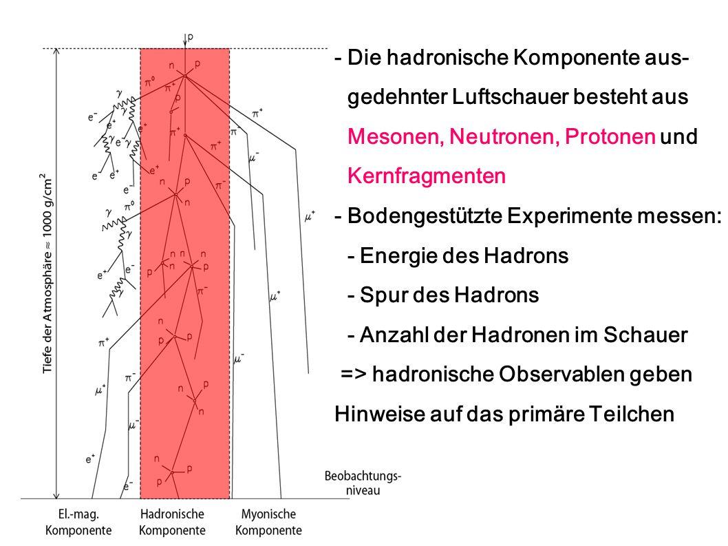 - Die hadronische Komponente aus- gedehnter Luftschauer besteht aus Mesonen, Neutronen, Protonen und Kernfragmenten - Bodengestützte Experimente messe