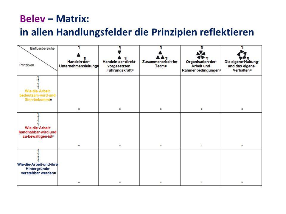 Belev – Matrix: in allen Handlungsfelder die Prinzipien reflektieren