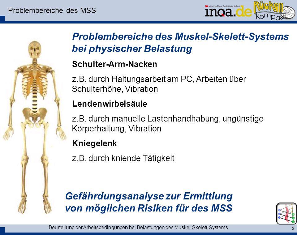 Beurteilung der Arbeitsbedingungen bei Belastungen des Muskel-Skelett-Systems 3 Problembereiche des MSS Problembereiche des Muskel-Skelett-Systems bei physischer Belastung Schulter-Arm-Nacken z.B.