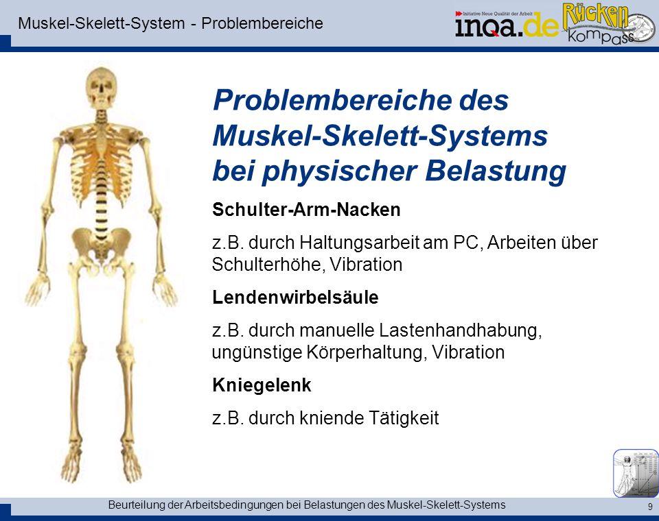 Beurteilung der Arbeitsbedingungen bei Belastungen des Muskel-Skelett-Systems 10 Muskel-Skelett-System Problembereich LWS Lendenwirbelsäule Bandscheibenvorfall Nervenwurzelkompression Verschmälerung des Zwischenwirbelraumes, Schlussplattensklerose, Randzackenbildung