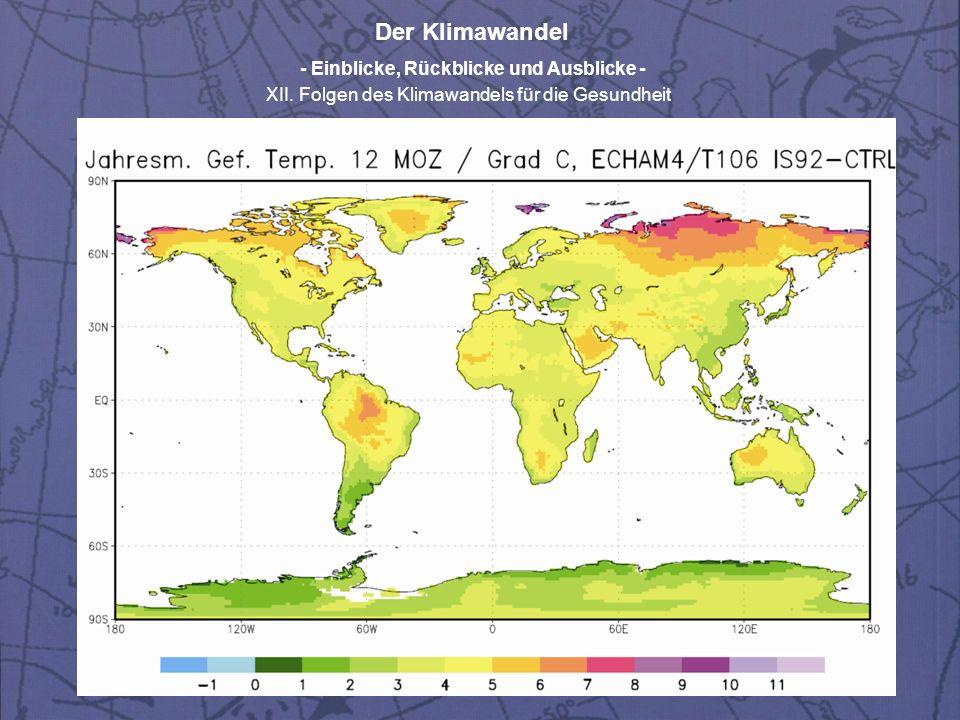 Der Klimawandel - Einblicke, Rückblicke und Ausblicke - XII.