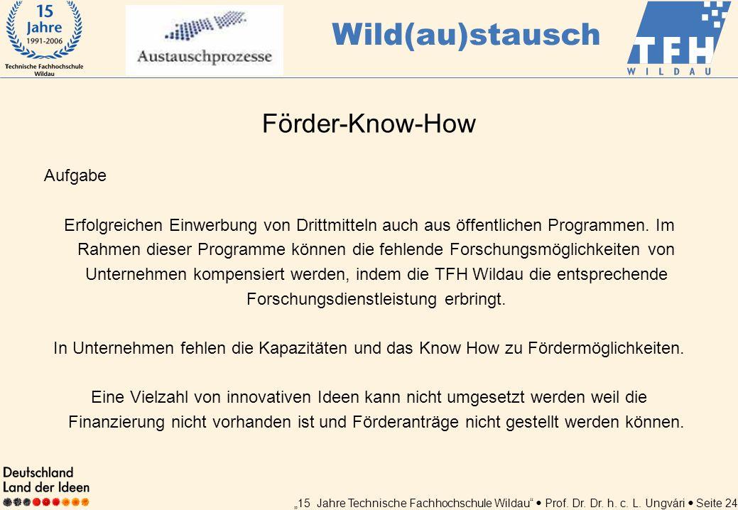 15 Jahre Technische Fachhochschule Wildau Prof. Dr. Dr. h. c. L. Ungvári Seite 24 Förder-Know-How Aufgabe Erfolgreichen Einwerbung von Drittmitteln au