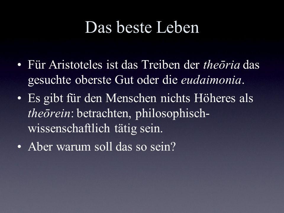 Das beste Leben Für Aristoteles ist das Treiben der theōria das gesuchte oberste Gut oder die eudaimonia. Es gibt für den Menschen nichts Höheres als