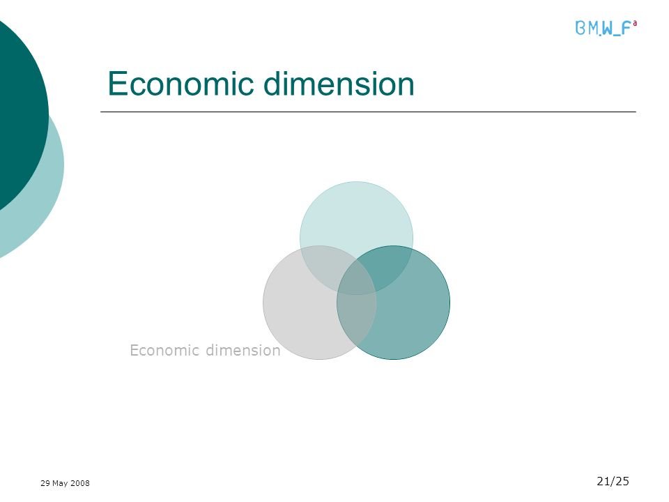29 May 2008 21/25 Economic dimension