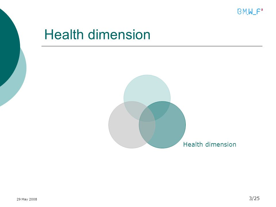 29 May 2008 3/25 Health dimension