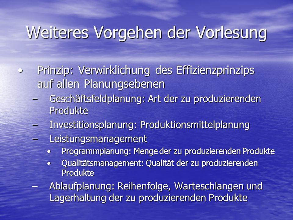 Weiteres Vorgehen der Vorlesung Prinzip: Verwirklichung des Effizienzprinzips auf allen PlanungsebenenPrinzip: Verwirklichung des Effizienzprinzips au