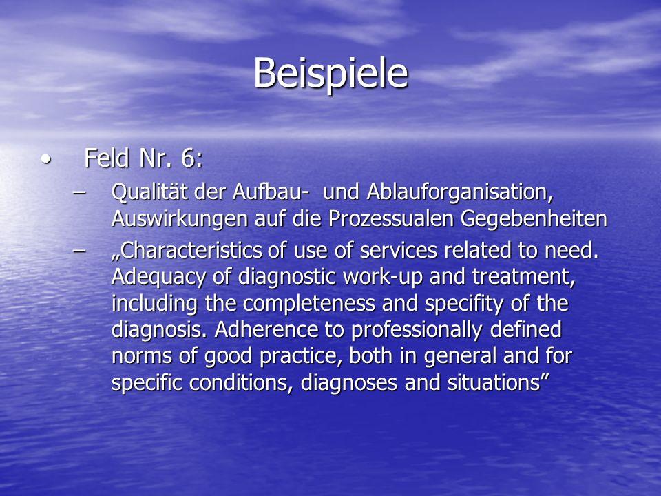 Beispiele Feld Nr. 6:Feld Nr. 6: –Qualität der Aufbau- und Ablauforganisation, Auswirkungen auf die Prozessualen Gegebenheiten –Characteristics of use