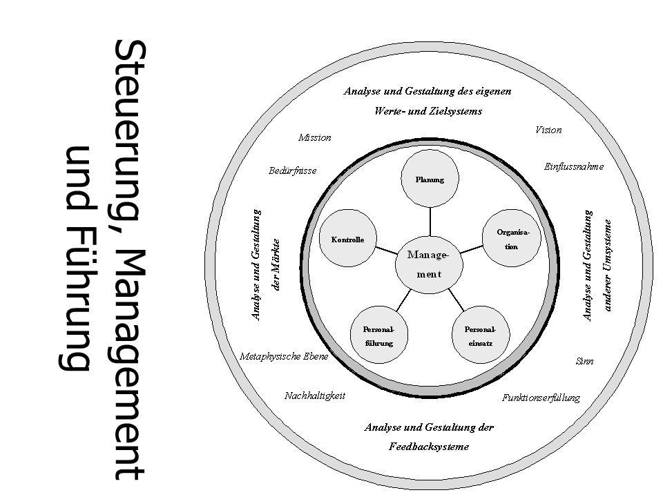Steuerung, Management und Führung